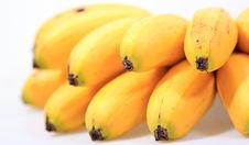 Bunch Of Tropical Bananas Stock Images
