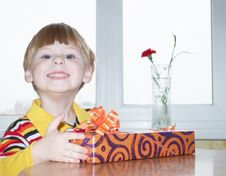 Free The Boy With A Gift Royalty Free Stock Photos - 13901808
