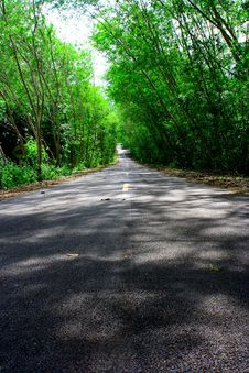 Free Natural Tunnel Road Stock Photography - 13902902