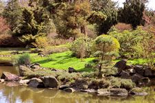Free Japanese Garden Royalty Free Stock Photos - 13903078