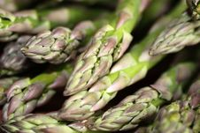 Free Green Asparagus Royalty Free Stock Images - 13904459