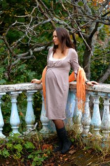 Free Young Pregnant Woman Stock Photos - 13908123