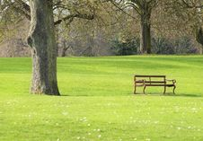 Free Bench In A Park Stock Image - 13909951