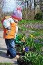 Free Little Gardener Royalty Free Stock Photos - 13916988