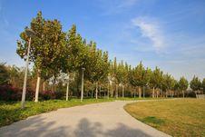 Free Corner In Olympic Park, Beijing Stock Photo - 13910510