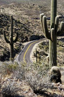 Free Desert Road 3 Royalty Free Stock Images - 13913589