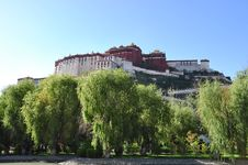 Free The Spring Of Zong-jiao-lu-kang Park Royalty Free Stock Photos - 13914348