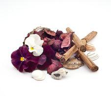 Free Ecological Home Parfume Stock Photo - 13915580