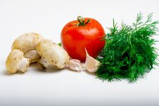 Free Useful Vegetables Stock Photos - 13916153