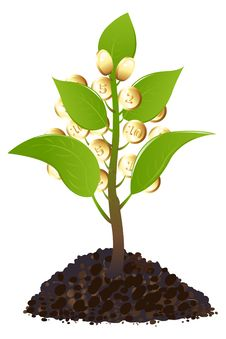 Free Green Young Plant With Money. Vector Stock Image - 13916301