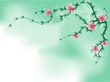 Free Floral Background Stock Photography - 13916322
