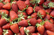 Free Strawberries Stock Photography - 13916672