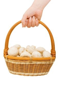 Free Basket With Field Mushrooms In A Hand Stock Images - 13921314