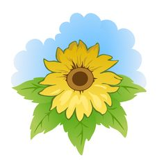 Free Sunflower Royalty Free Stock Images - 13921489