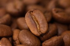 Free Close Up Macro Shot Of Coffee Bean Stock Images - 13922384