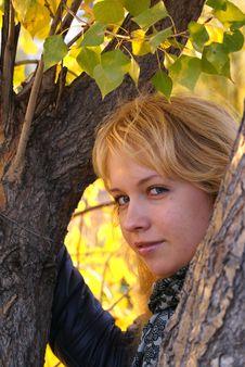 Free Blond Royalty Free Stock Image - 13924116