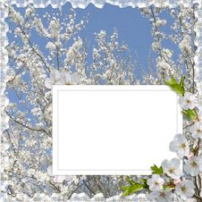 Free Card For Holiday With Flowers Royalty Free Stock Photo - 13924955