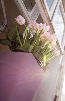 Free Tulips On Windowsill Stock Photos - 13925923