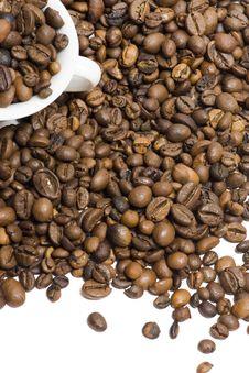 Free Coffee Stock Image - 13928731