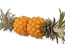 Free Pair Pineapple Cut On A White Stock Photos - 13929653