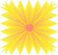 Free Yellow Flower Royalty Free Stock Photo - 13935895