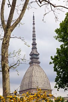 Free Mole Antonelliana, Turin (Piedmont), Italy Stock Images - 13931524