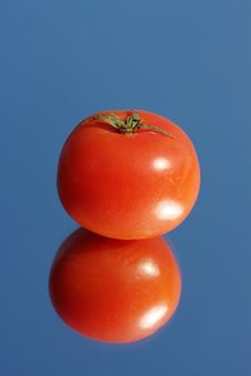 Free Tomato Stock Photos - 13932283