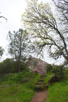 Free Mt Diablo Trail Royalty Free Stock Photos - 13933458