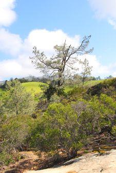 Free Mountain Terrain Royalty Free Stock Photo - 13933485