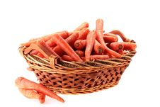 Carrot Crop Royalty Free Stock Photography