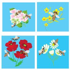 Free Set Of Cards With Bees And Flowers Stock Photos - 13935913