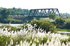 Free Vista Flowers Grass And Bridge Railway Royalty Free Stock Photo - 13936265