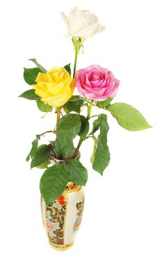 Free Three  Roses Stock Photos - 13938943