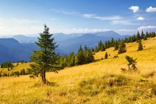 Free Summer Mountain Landscape Royalty Free Stock Photography - 13939457