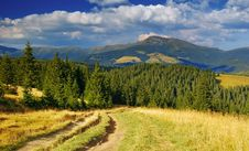 Summer Landscape In Mountains A Sunny Day Stock Images