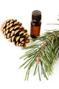 Free Bottle Of Fir Tree Oil Royalty Free Stock Photo - 13944655