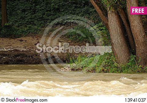 Free Nature 118 Royalty Free Stock Photography - 13941037