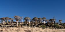 Free African Landscapes - Namibia. Royalty Free Stock Photos - 13940458