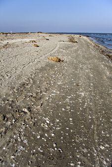 Free Dirty Beach Stock Photo - 13942810