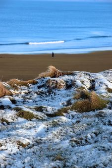 Free Snowy Winter Walk On A Cold Beach Royalty Free Stock Photos - 13943258