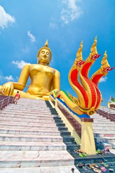 Free Buddha & Naga Royalty Free Stock Photo - 13944775