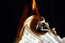 Free Money On Fire Royalty Free Stock Photo - 13945765