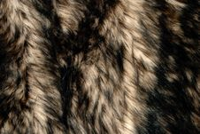 Free Blurry Fur Stock Images - 13947754