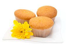 Free Gentle Vanilla Cakes Stock Photos - 13947903