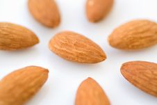 Free Almonds Stock Images - 13948154