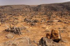 Free Tayq Cave, Oman Stock Photo - 13948650