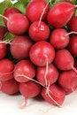 Free Fresh Radishes Royalty Free Stock Image - 13957426