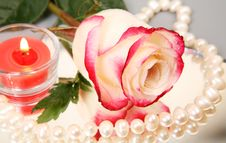 Free Rose And Candle Stock Photography - 13950292