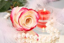 Free Rose And Candle Royalty Free Stock Photo - 13950305