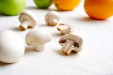 Free Champignons Stock Photography - 13951202